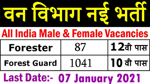 forest guard vacancy 2020 rajasthan